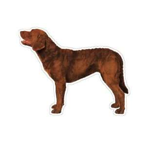 CHESAPEAKE BAY RETRIEVER   Dog Decal   sticker car got
