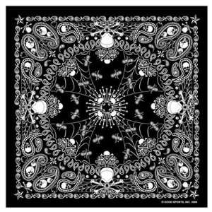 Paisley Skull Bandana measures 21x21 High Quality COOL BIKER Doo Rag