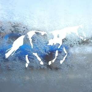 Paint Horse White Decal Car Laptop Window Vinyl White