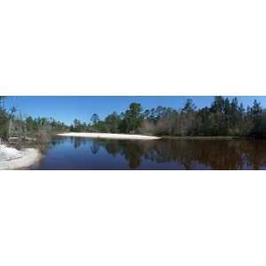 Panoramic Wall Decals   Blackwater River Pano01 United States (4 foot